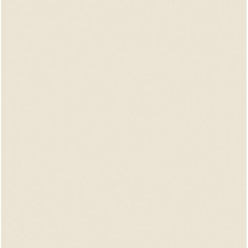 """Rosco RoscoSleeve T5 x 60""""(#3410 Roscosun 1/8 CTO)"""