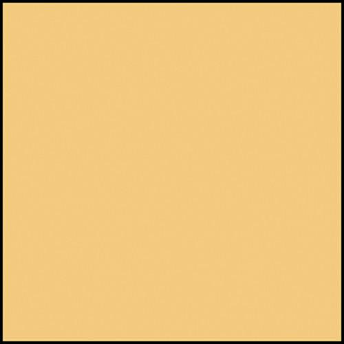 """Rosco Permacolor - Goldenrod - 2x2"""" Square"""