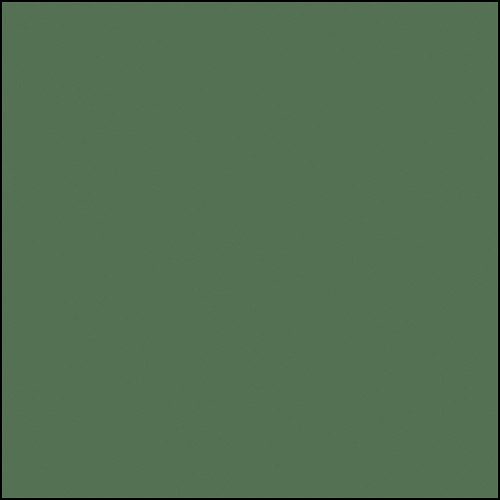 """Rosco Permacolor Glass Filter - Primary Green - 6.3"""" Round"""