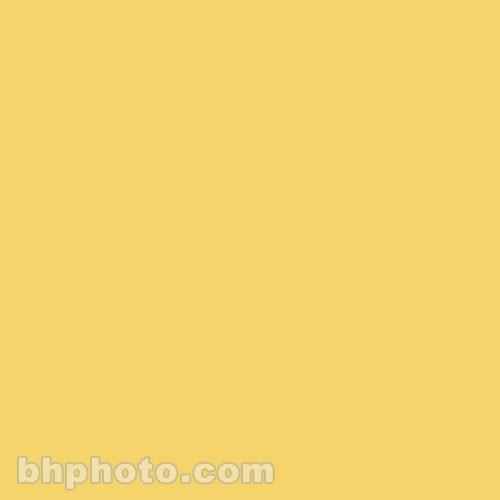 "Rosco Permacolor - Yellow - 8-1/4"" Round"