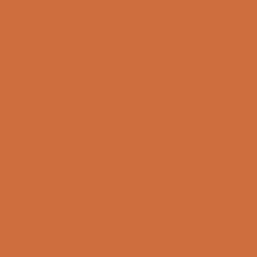 """Rosco Permacolor Glass Filter - Medium Orange - 8-1/4"""" Round"""