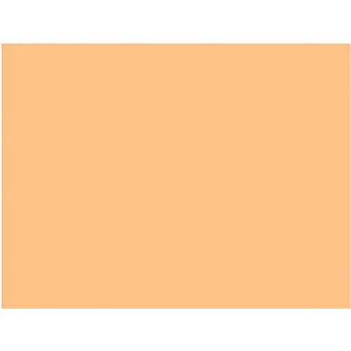 "Rosco #3408 Filter - RoscoSun 1/2 CTO - 20x24"""