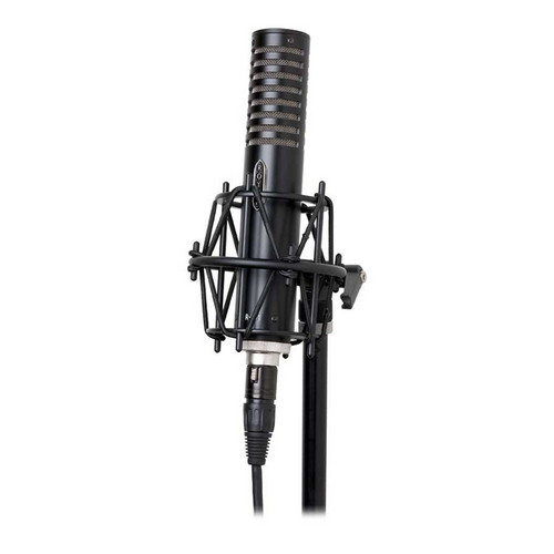 Royer Labs R-101 Ribbon Microphone