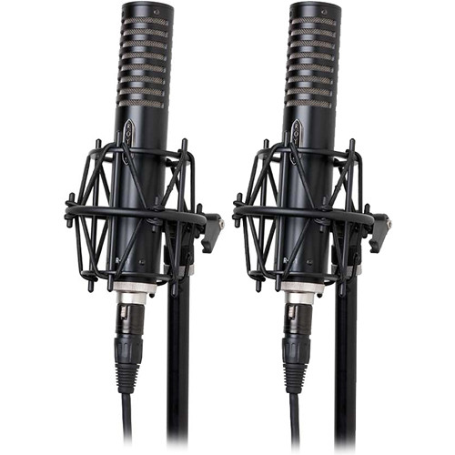 Royer Labs R-101-MP Ribbon Microphones