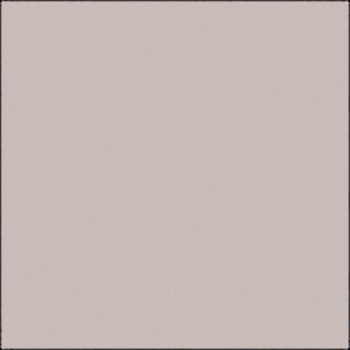 "Savage Widetone Seamless Background Paper (#61 TV Gray, 53"" x 36')"