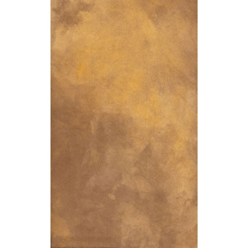 Savage Canvas Infinity Hand Painted Background (9 x 10', Autumn)