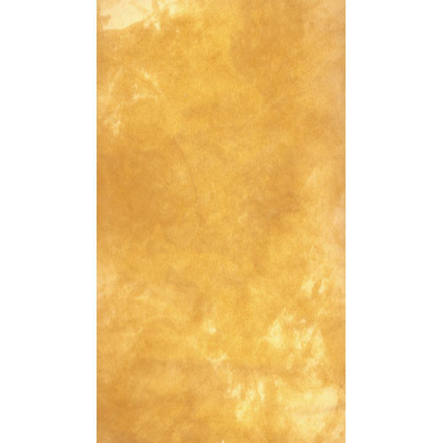 Savage Canvas Infinity Hand Painted Background (9 x 10', Golden Sand)