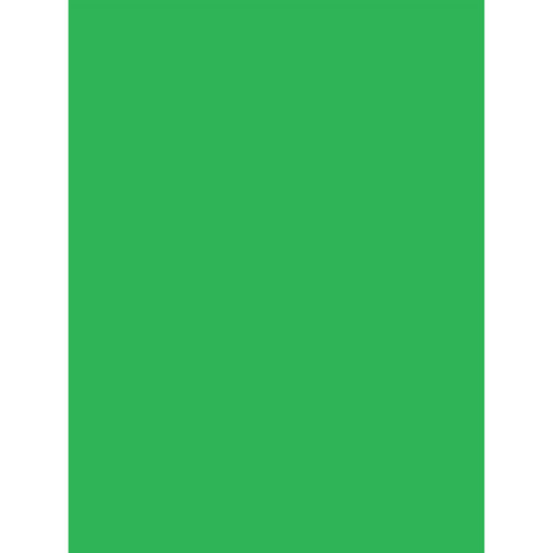 Savage Infinity Lint Free Pro Cloth Background (10 x 10', ProChroma Green)