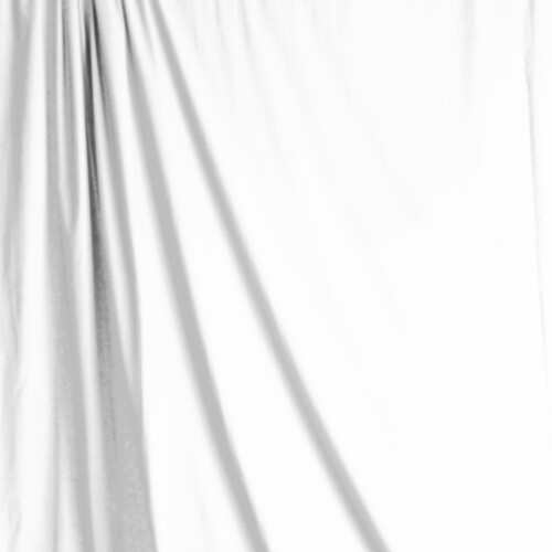Savage Accent Solid Muslin Background (10 x 12', White)