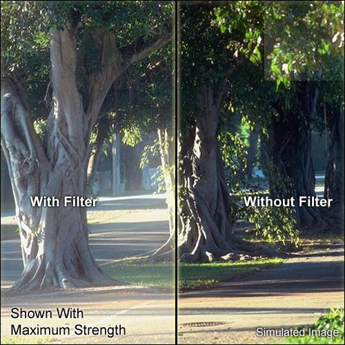 """Schneider 5x5"""" Digicon 1/2 Glass Filter"""