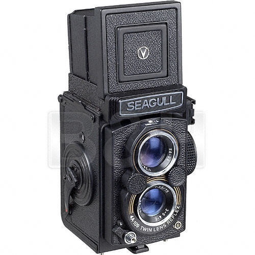 Seagull Guitars GC-109 Camera