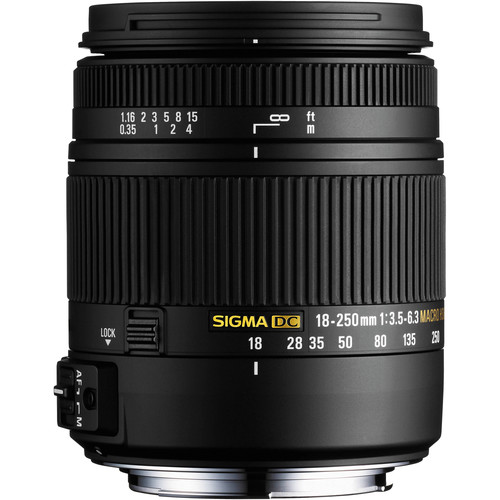 Sigma 18-250mm f/3.5-6.3 DC Macro OS HSM Lens and EF610 DG ST Flash Kit for Sony