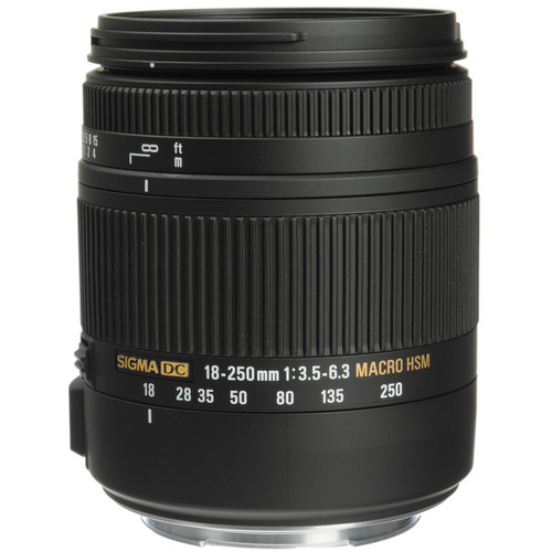 Sigma 18-250mm f/3.5-6.3 DC Macro OS HSM Lens and EF610 DG ST Flash Kit for Canon
