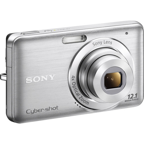 Sony Cyber-shot DSC-W310 Digital Camera (Silver)