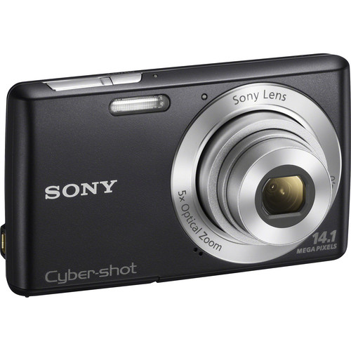 Sony Cyber-Shot DSC-W620 Digital Camera (Black)