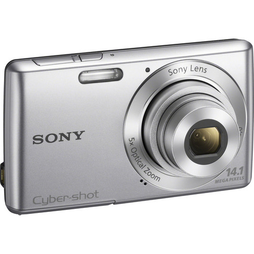 Sony Cyber-Shot DSC-W620 Digital Camera (Silver)
