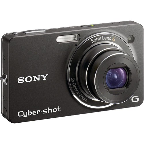 Sony DSC-WX1 Cybershot Digital Camera (Black)