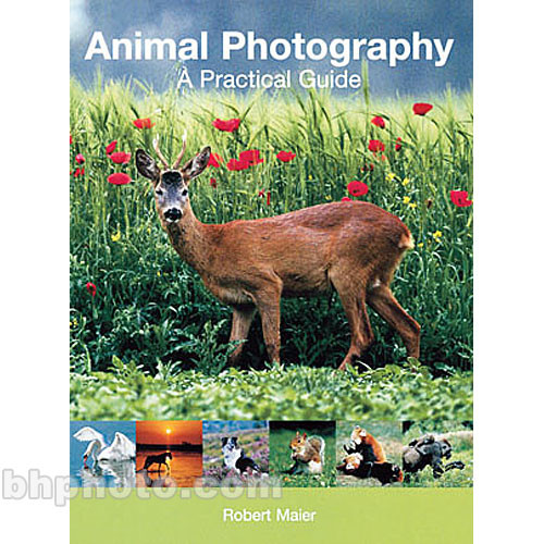 Sterling Publishing Book: Animal Photography