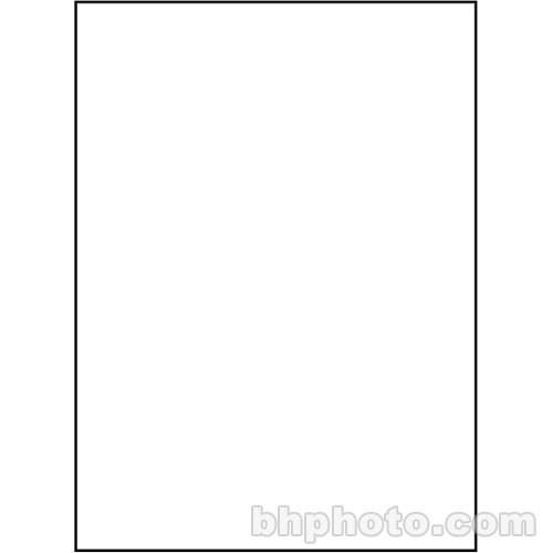 Studio Dynamics 10x15' Muslin Background - Solid White