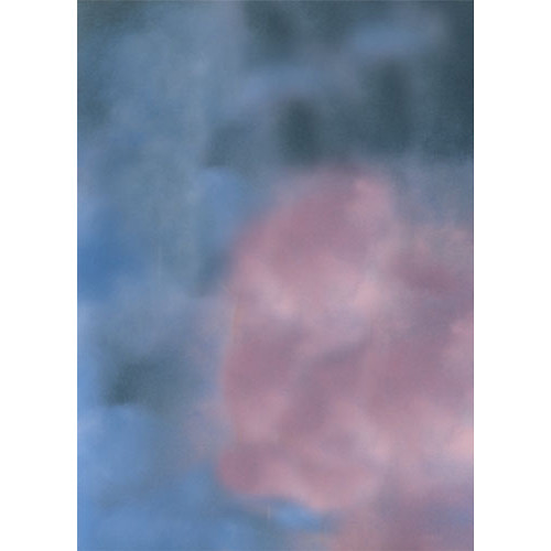 Studio Dynamics 6x8' Canvas Background LSM - Dynasty