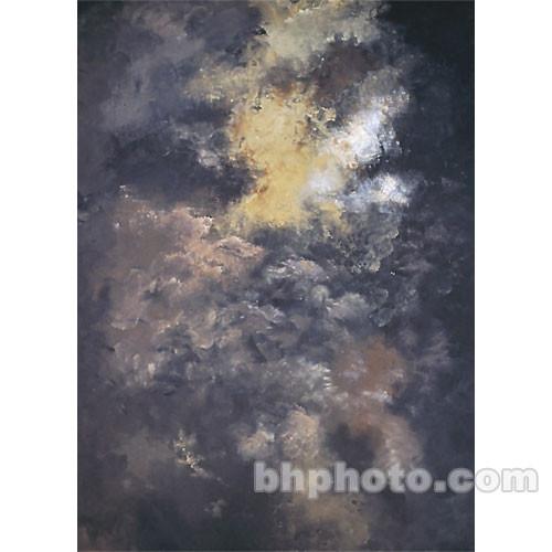 Studio Dynamics 6x8' Canvas Background LSM - Laredo