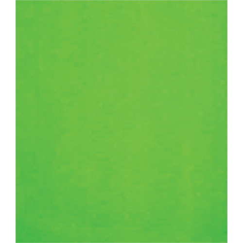 Studio Dynamics 8x10' Canvas Background SM - Chroma Key Green