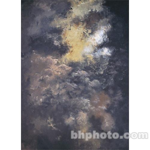 Studio Dynamics 8x10' Canvas Background SM - Laredo