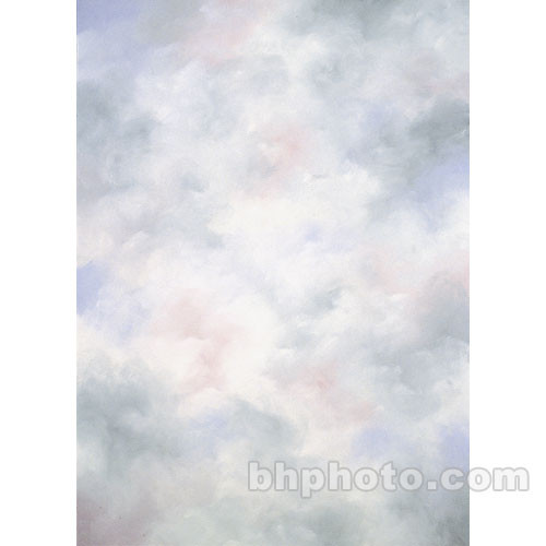 Studio Dynamics 8x12' Canvas Background LSM - Chantal