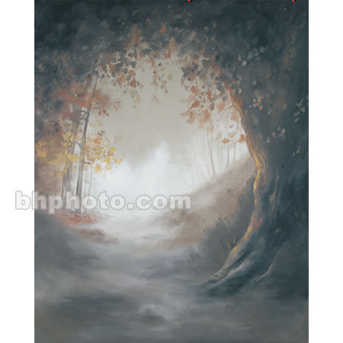 Studio Dynamics Canvas Scenic Background (8 x 12', Mayfair )