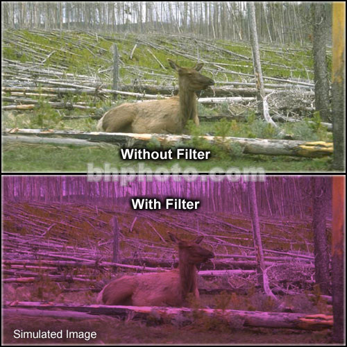 "Tiffen 2 x 2"" 2 Plum Hard-Edge Graduated Filter"