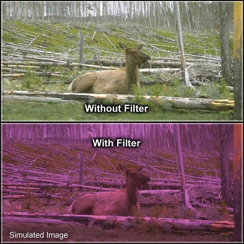 "Tiffen 2 x 2"" 2 Plum Solid Color Filter"