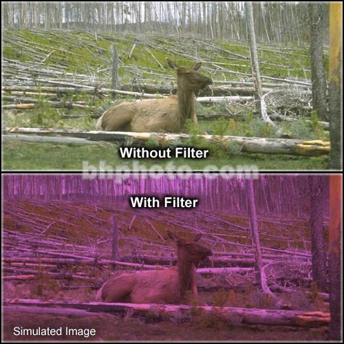 "Tiffen 2 x 3"" 2 Plum Soft-Edge Graduated Filter (Vertical Orientation)"