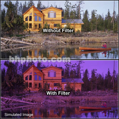 "Tiffen 2 x 3"" 2 Grape Solid Color Filter"