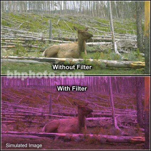 "Tiffen 2 x 3"" 2 Plum Solid Color Filter"