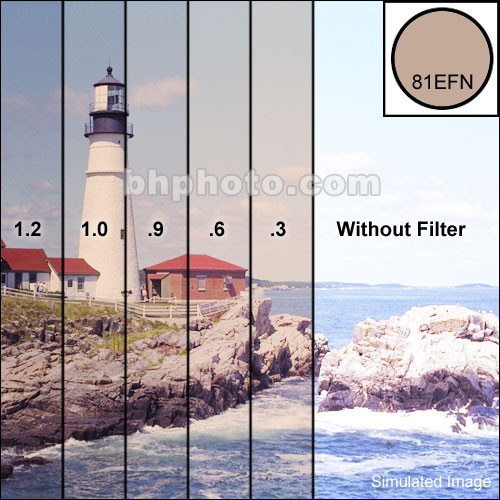 """Tiffen 4 x 4"""" Combination 81EF/ND 0.6 Filter (2-Stop)"""