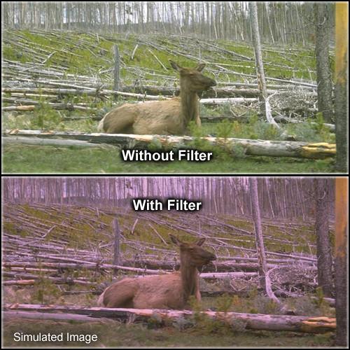 "Tiffen 4 x 4"" 1 Plum Solid Color Filter"