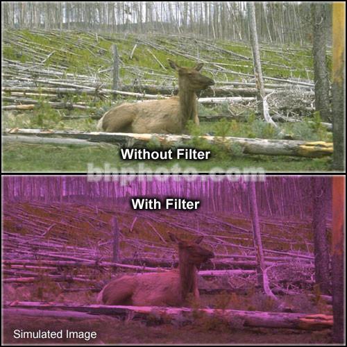 "Tiffen 4 x 5.65"" 2 Plum Hard-Edge Graduated Filter (Horizontal Orientation)"