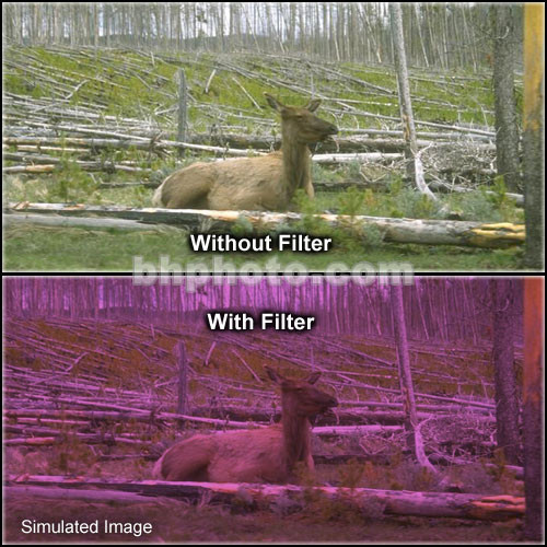 "Tiffen 4 x 5.65"" 2 Plum Hard-Edge Graduated Filter (Vertical Orientation)"