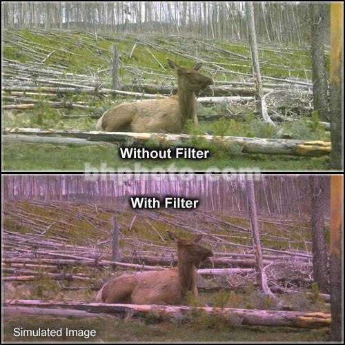 "Tiffen 4 x 5"" 1 Plum Hard-Edge Graduated Filter (Horizontal Orientation)"