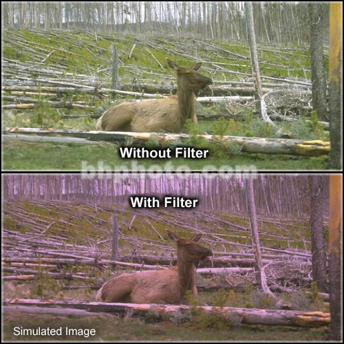 "Tiffen 5 x 6"" 1 Plum Hard-Edge Graduated Filter (Horizontal Orientation)"