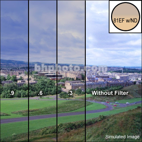 """Tiffen 4 x 6"""" Combination 81EF/ND 0.6 Filter (2-Stop)"""