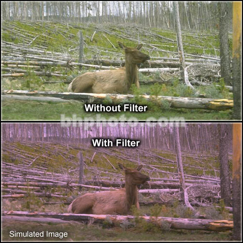 "Tiffen 4 x 6"" 1 Plum Hard-Edge Graduated Filter (Horizontal Orientation)"