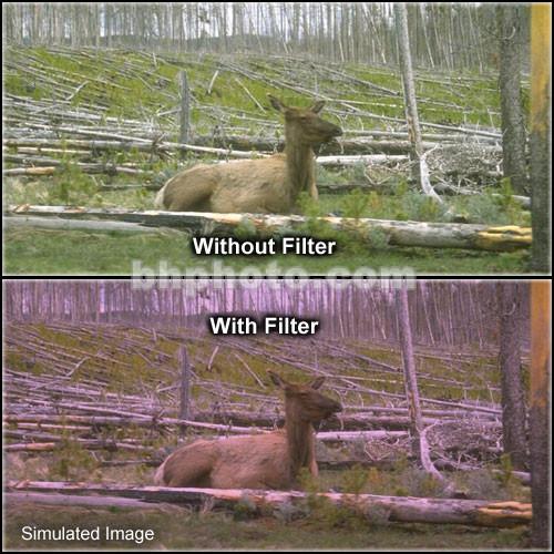"Tiffen 4 x 6"" 1 Plum Soft-Edge Graduated Filter (Horizontal Orientation)"