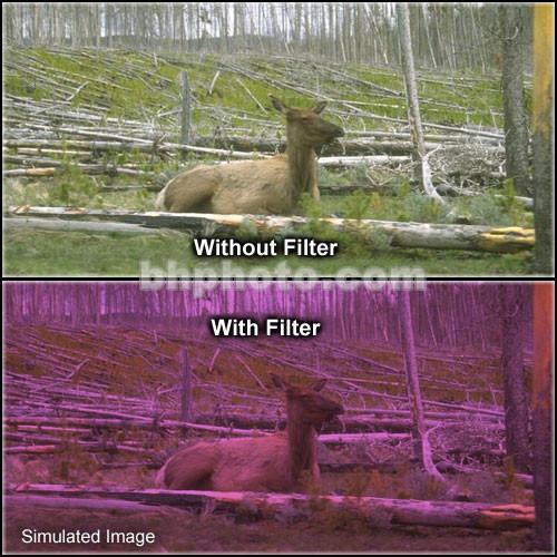 "Tiffen 4 x 6"" 2 Plum Hard-Edge Graduated Filter (Horizontal Orientation)"