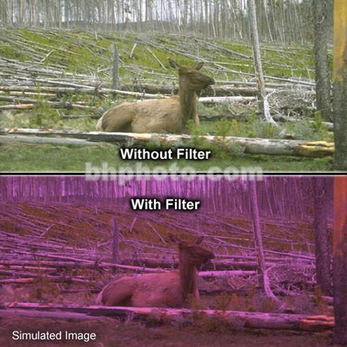 "Tiffen 4 x 6"" 2 Plum Solid Color Filter"