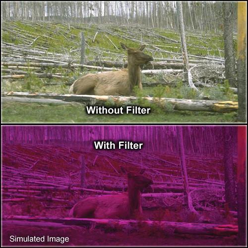 "Tiffen 6.6 x 6.6"" 3 Plum Solid Color Filter"
