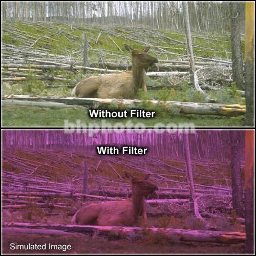 "Tiffen 6 x 6"" 2 Plum Hard-Edge Graduated Filter"