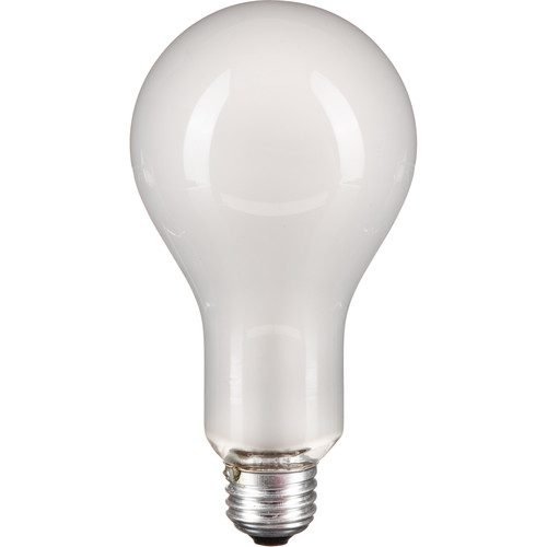 Ushio EBV Photoflood Lamp (500W/120V, Frosted)