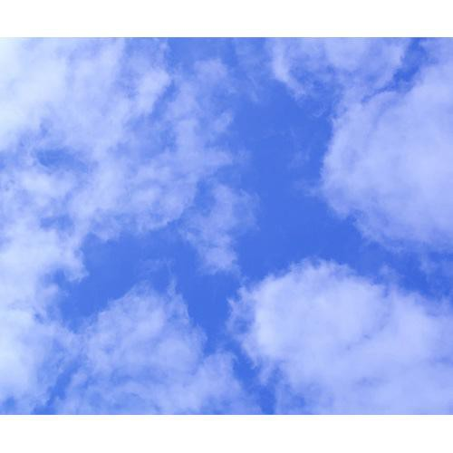 Westcott Scenic Background (5x6', Clouds)