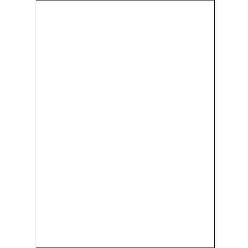 Won Background Muslin Modern Background - 10x20' - White